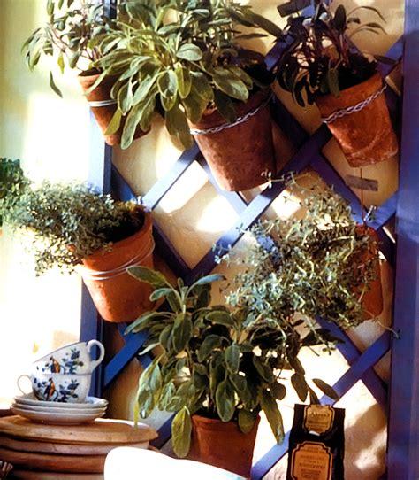piante aromatiche in vaso piante aromatiche in vaso utilizziamo una griglia aromatica