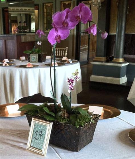 orchids centerpieces wedding ideas 17 best ideas about potted orchid centerpiece on orchid wedding centerpieces white
