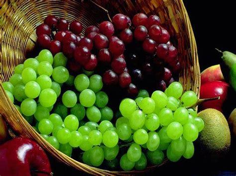 Os 10 Benef 237 Cios Da Uva Para Sa 250 De Dicas De Sa 250 De | benef 237 cios da uva para sa 250 de toda atual