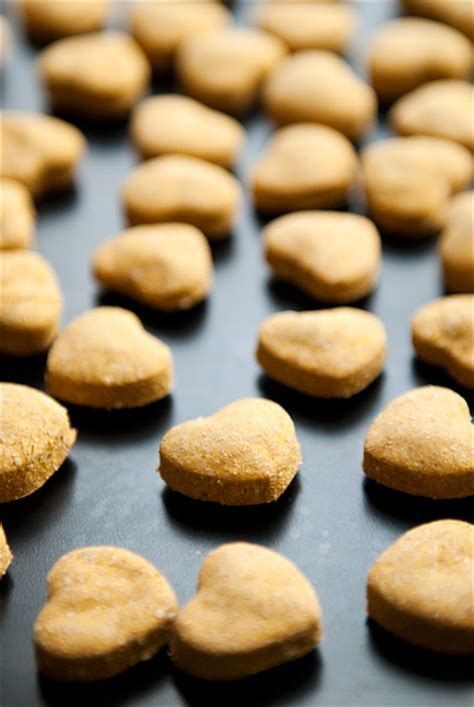 treat recipes pumpkin pumpkin peanut butter treats recipe use real butter