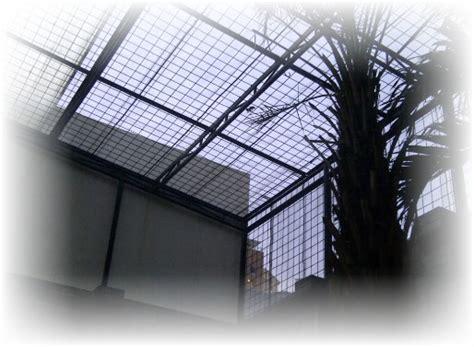 desain atap rumah panjang ke belakang teralis atap rumah minimalis cantik terbaru jual kanopi