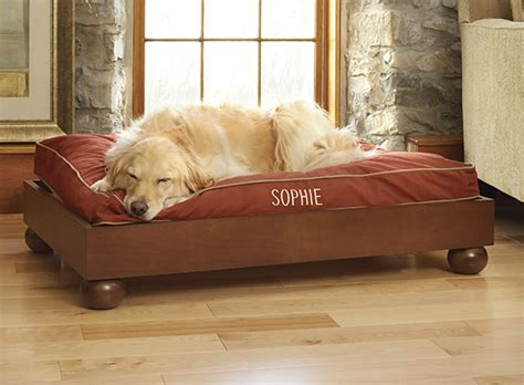 dog beds costco dog beds for large dogs costco ideas dog beds for large