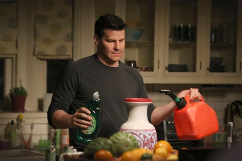 bones the recluse in the recliner bones season 9 episode 24 the recluse in the recliner may