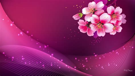 widescreen pink background hd image pc colours