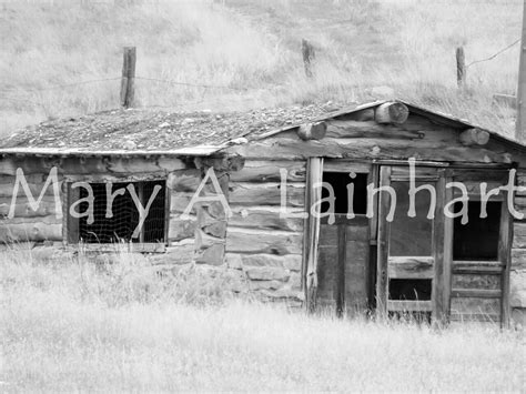 log and sod roof sod roof log cabin