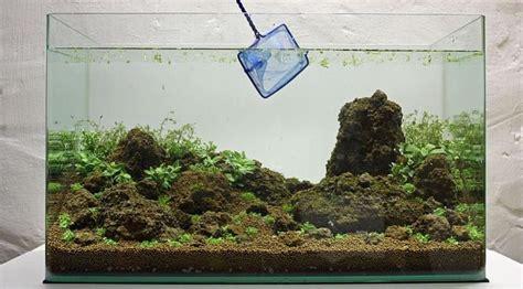 cara membuat aquascape tanpa tanaman cara membuat aquascape sederhana jigajigo com
