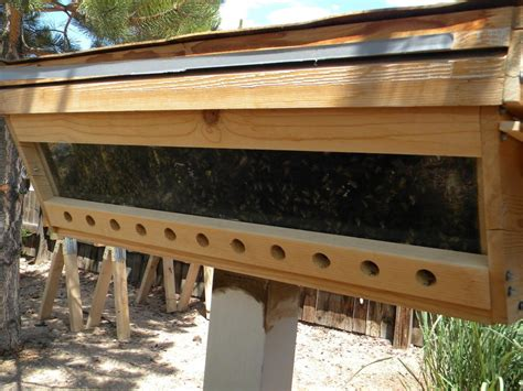 top bar hive pdf beekeeping forum building a top bar hive garden org