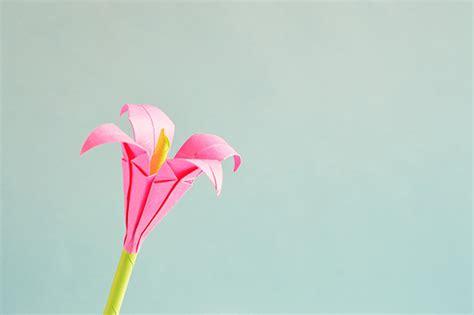 Beautiful Origami - beautiful origami flowers floranext florist websites