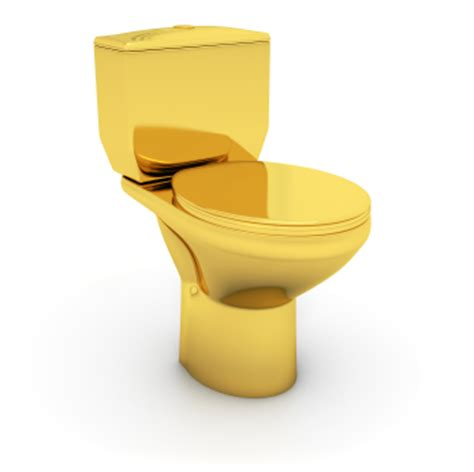 golden toilet be careful not to over improve your house coconut grove
