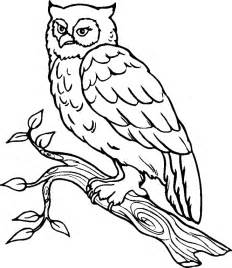 Owl Outlines Drawings by Owl Outline Drawing Coloring Home