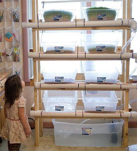 innovative homemade hydroponics systems