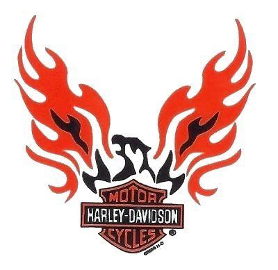 Helm Aufkleber Harley Davidson by Best 25 Harley Davidson Stickers Ideas On