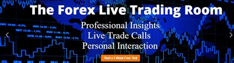 forex live trading room the truth about trade empowered forex robot nation