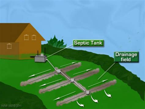 septic drain field diagram septic system troubleshooting guide