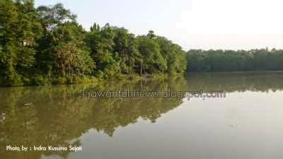 Lu Tembak Lapangan menikmati danau rawa dongkal cibubur ejawantah news