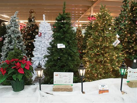 michigan christmas tree association real artificial trees meet different needs during christmastime