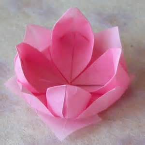 Essay On Lotus Flower Of Folding Paper Skyscrapercity