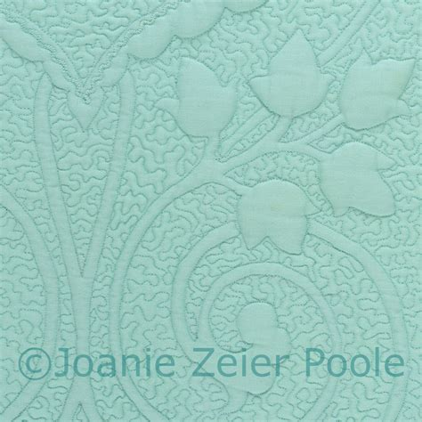 Machine Quilting Ideas by Joanie Zeier Poole Lectures