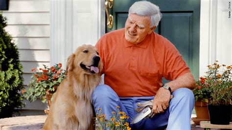 old houses old people old dogs keeping your pet during the golden years cnn com