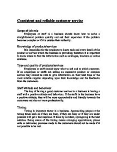 Customer Service Essay by Customer Essay