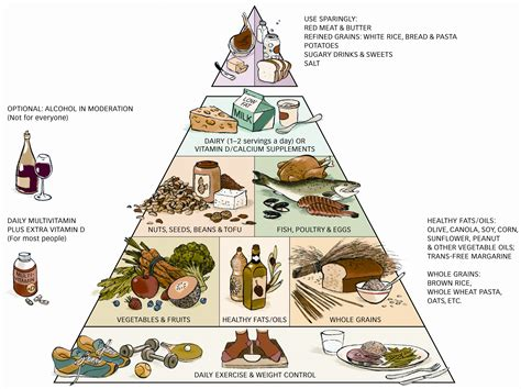 healthy food healthy food pyramid healthy food house