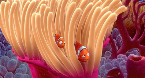 anemone finding nemo 12 things you didn t know about finding nemo oh my disney