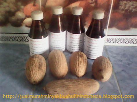 Minyak Ulin jual murah minyak buah ulin asli dari kalimantan indonesia