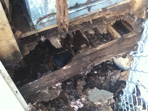 Water Damaged Floor Joists by Joists Water Damage In Shower 28 Images Damaged Floor