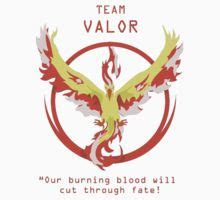 Lanyard Team Valor Go 138 best images about on behance drawing and