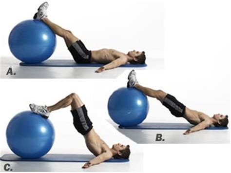 swiss ball hamstring curls  exercise works
