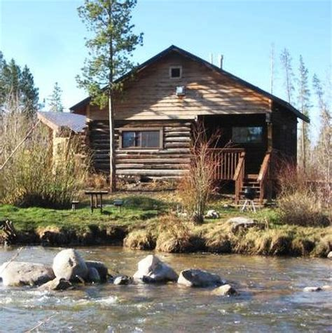 Cabins Grand Lake Co by Catch A Glimpse Of The Marvelous Wildlife At Cca Picture