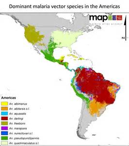 malaria map south america south america information map
