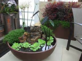 water plants on indoor water garden water