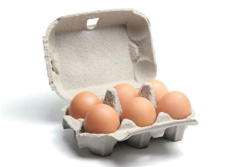 How To Make Egg Trays From Recycled Paper - which is best recyclable paperboard or polystyrene egg