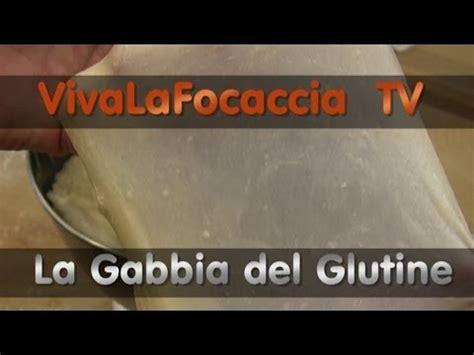 la gabbia tv vivalafocaccia tv puntata 9 la gabbia glutine