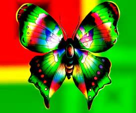 colorful butterfly colorful butterfly backgrounds 6 cool hd wallpaper