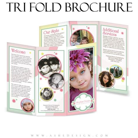 ashe design bubble gum 8 5x11 tri fold brochure
