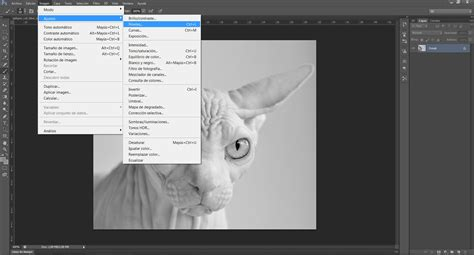 tutorial photoshop cs6 deutsch tutorial photoshop cs6 efecto pop art de andy warhol