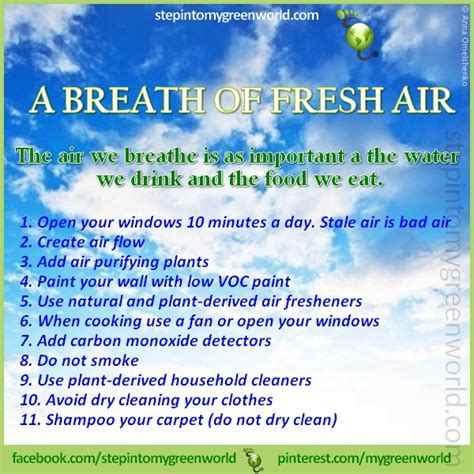 Tips For Fresh Healthy Air In Your Home by 17 Best Images About Health Chart Tips On