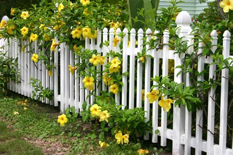 Shabby Cottage Home Decor by 26 White Picket Fence Ideas And Designs