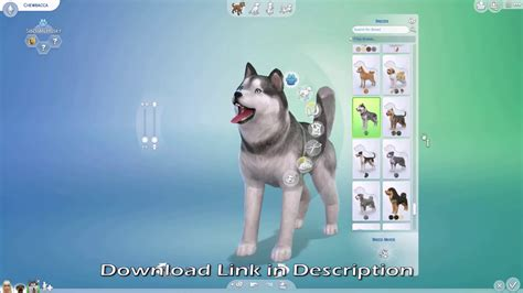 sims 4 cats and dogs cheats the sims 4 cats dogs key codes serial keygen hckonline