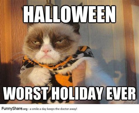 Halloween Cat Meme - funny halloween pictures and memes 2013 fubarfarm com