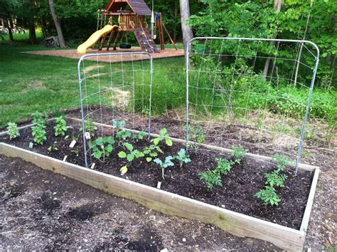 how to keep pests out of vegetable garden pest what is the best way to prevent animals