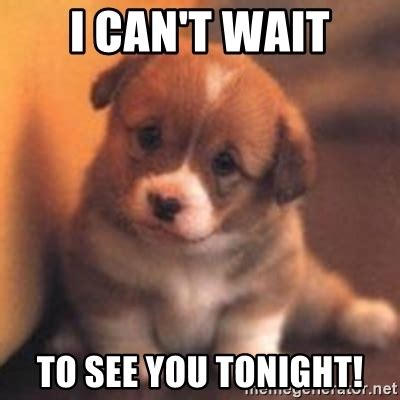 Can T Wait Meme - i can t wait to see you tonight cute puppy meme generator