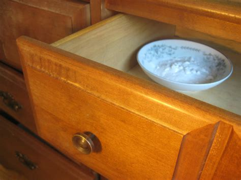 how to get rid of bad smells in your wood furniture alan