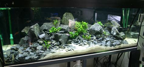 aquarium ideen wandtattoo fische aquarium f 252 r badezimmer wanddekoration