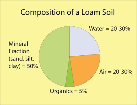 What Is Composition by Composition Of A Loam Soil Nickole