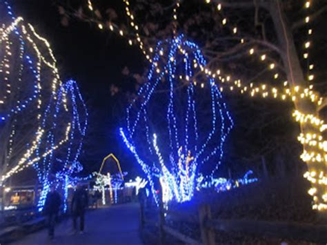 columbus zoo lights hours violet s silver lining things to do in ohio wildlights