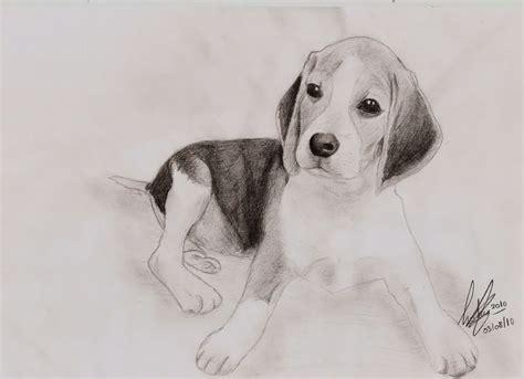 imagenes a lapiz para dibujar de animales dibujar perros l piz y papel dibujos para pintar dibujos