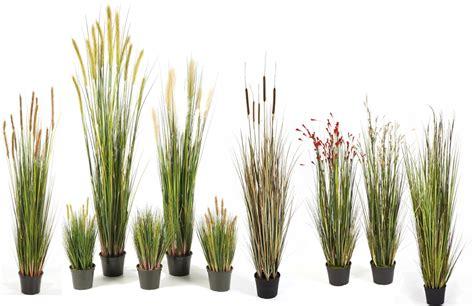 kunstpflanzen wetterfest gr 228 ser k 252 nstlich